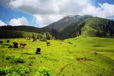 Siri Paye, Shogran, Pakistan