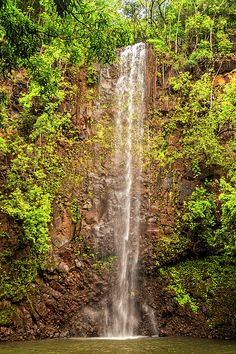 Fine Art Photography, Nature Photography, Image Archive, Kauai, Wonderful Images, Fine Art America, Paths, Waterfall, The Secret