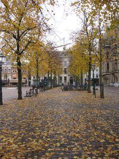 Den Haag... His hometown