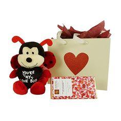 Love Bug - Valentine's Day Gift - Bestow - Auckland - New Zealand Men And Babies, Best Gift Baskets, Auckland New Zealand, Love Bugs, Beautiful Gifts, Valentine Day Gifts, Baby Gifts, Gifts For Her, Flowers
