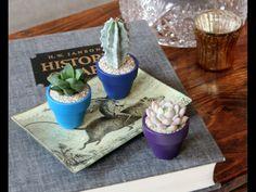 little pot plants for your bathroom window sill