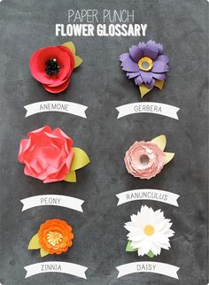 This is a great flower reference from the Paper Boutique with Linda. I don't know about you, but I cannot always remember what the name of the flower is, so this is a handy dandy reference!
