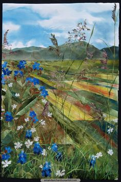 Alkanet with Stitchwort Piano Grande - The Piano Grande in Umbria is a flat plain contained by mountains. There are strips of summer fields between expanses of wild flowers. Nature and farming co-exist in blissful harmony.