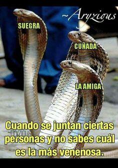 #imagenesgraciosas #humor