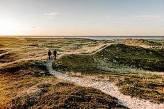 Nationalpark Thy er det tætteste, man i Danmark kommer på en ødemark. Men mange af gæsterne ved ikke, hvor de skal finde de største og bedste naturoplevelser i det 244 kvadratkilometer store område. Det tocifrede millionbeløb fra Nordea-fonden skal medvirke til at guide publikum. Foto: Mette Johnsen