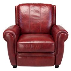 Max Leather Arm Chair - Love the colour