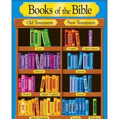 I want to make this for our Sunday school class! So great for me to remember the books in sections like this, too.