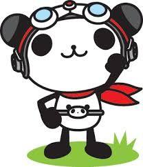 panda에 대한 이미지 검색결과