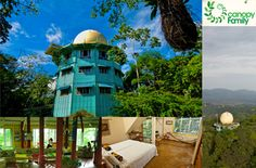 Canopy Tower, Hotel in Panama Panama City Panama, Canopy, Wild Animals, Woods, Places, Destinations, Floor, Travel, Canopies