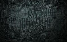 Обои картинки фото текстура, кожа, черная, крокодил