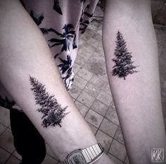 Evergreen Tree Tattoo by Noksi