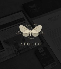 Apollo / logo design / branding / identity / butterfly / moth / clothing label / modern twist / by Tiffany Hsu: