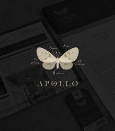 Apollo / logo design / branding / identity / butterfly / moth / clothing label / modern twist / by Tiffany Hsu: