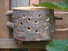 Rustic solitary bee house. I happen to have some orange tree logs that would work beautifully.