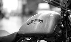 2015 Harley Davidson Iron-883