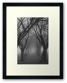 Foggy Path by Errne