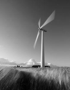Wind motion by Soeren Friberg
