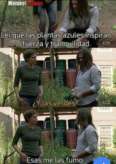 from the story ¡Te Amo Idiota!-- (Carl Grimes y _____ Dixon) by with 317 reads. The Walking Deaf, Memes The Walking Dead, Fear The Walking Dead, Carl Grimes, Twd Memes, Funny Memes, Funny Pictures Can't Stop Laughing, Super Funny Pictures, Humor Grafico