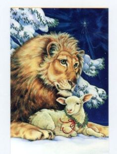 one RARE Lion & Lamb Christmas animal greeting card  ~ art by famous  Donna Race