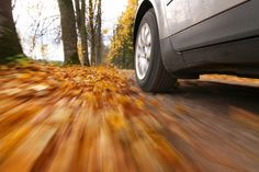 Wet leaves on roadways can be as slippery as ice causing dangerous driving conditions. As we head into the second half of the week and continues to build momentum it's imperative to stay alert while traveling Cleveland, Car Checklist, Car Care Tips, Automotive Group, Automotive Industry, Autumn Scenes, Driving Tips, Driving School, Kiel