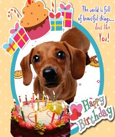 896 best dachshunds birthday greetings celebrations images on free online a very cute birthday card ecards on birthday m4hsunfo
