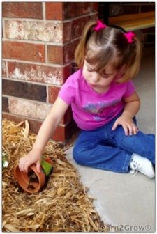 """Too cute! Create """"Toad Abode"""" with your kiddos to attract toads to your garden to eat everything that bugs them. :-)"""