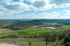 Valley of Elah, where David fought Goliath.