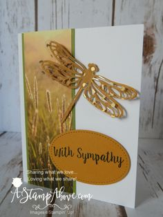 Dragonfly Dreams, Detailed Dragonfly Thinlits, Serene Scenery DSP Stack, Fabulous Foil Designer Acetate, Stitched Shapes Framelits (exterior)