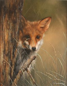 Carl Whitfield, Original oil painting on panel, Fox in the Grass Art at York Fine Arts Online, Buy Original Fine Art in the UK Wildlife Paintings, Wildlife Art, Animal Paintings, Types Of Animals, Animals And Pets, Cute Animals, Beautiful Creatures, Animals Beautiful, Planeta Animal