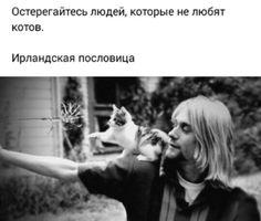 Lifestyle, Couple Photos, My Love, Animals, Photos, My Boo, Animais, Animales, Couple Pics