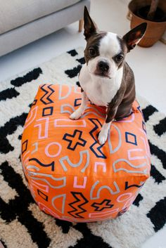 French Bulldog on top of geometric-patterned poof