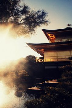 A misty morning at Kinkakuji (the Golden Pavilion)