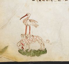 Dog and stork. Festival prayer book (mahzor) for the Special Shabbatot, Passover, Shavuot with the Book of Ruth, and Ninth of Av with the Book of Lamentations, Ashkenazi rite (aka 'Tinted Mahzor')  Germany; 1st half of the 14th century