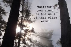 Wherever you stand be the soul of that place. - Rumi