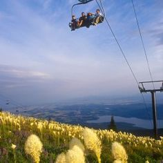 Ride the Scenic Chair Lift Rides on the Whitefish Mountain Resort, high above the trees and experience the spectacular views. Take a bike with you to enjoy the many trails.