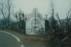 Random Local History - Duquette Ranch. The gate after the Green Meadows fire.