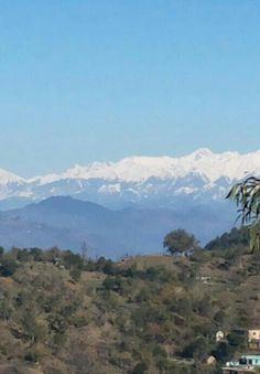 Snow clad Dhauladhar