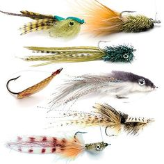various patterns for redfish