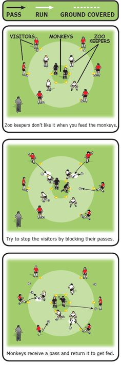 Monkeys and zoo keepers soccer drill
