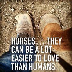 Definitely a lot easier to love - Horses Funny - Funny Horse Meme - - Definitely a lot easier to love The post Definitely a lot easier to love appeared first on Gag Dad. Funny Horse Memes, Funny Horses, Cute Horses, Horse Love, Horse Girl, Beautiful Horses, Barrel Racing Quotes, Inspirational Horse Quotes, Horse Riding Quotes