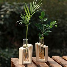 These elegant test tube vases with wooden stands are perfect for your indoor gardening to add a beautiful fresh aura to your home. The vases can hold your decorative flowers, plants, and water which you can regularly change, giving a pleasant appearance of freshness and purity. This set will make a handsome gift or present for friends or loved ones to mark cherished moments like birthdays, or vacations. It will be fantastic to enrich the presence of your desktop, dining room, or living room. Pro Glass Planter, Glass Terrarium, House Plants Decor, Plant Decor, Flower Vases, Flower Pots, Vase Transparent, Hydroponic Plants, Clear Vases
