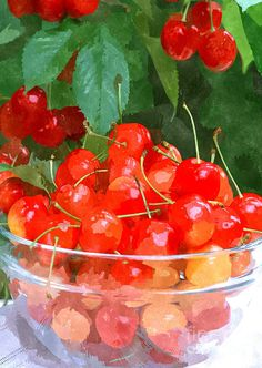 Cherries On Glass Bowl Photograph by Lanjee Chee - Cherries On Glass Bowl Fine Art Prints and Posters for Sale