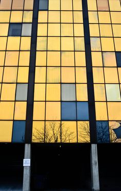 Yellow Blue. @designerwallace