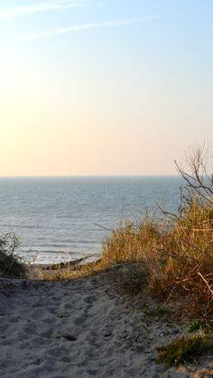The sea at Domburg (Netherlands)