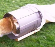 "Day 21: Make a dog agility chute. Also see other ideas on ""Dog Agility"" board so there are more activities for Cooper to do."