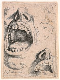Jusepe de Ribera: Study of mouths and noses, etching, ca. 1622 · Fogg Museum