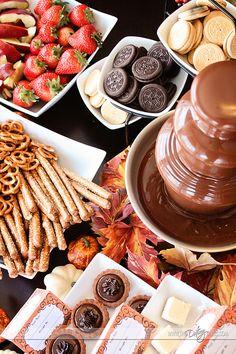 Chocoladefontein - https://cookinglife.nl/chocoladefontein/