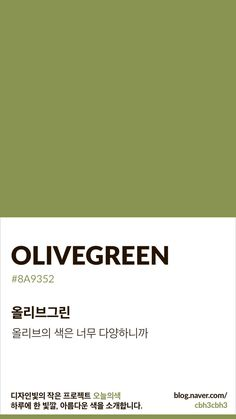 Flat Color Palette, Colour Pallete, Pantone Colour Palettes, Pantone Color, Colour Dictionary, Pantone Green, Aesthetic Colors, Olive Green Color, Color Swatches