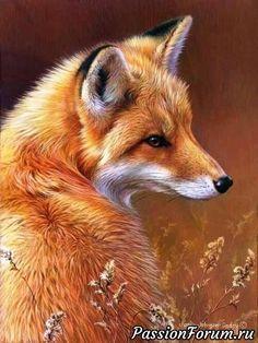 Картинки для декупажа.из интернета - запись пользователя Sofy (Софи) в сообществе Картинки для творчества в категории Животные и птицы
