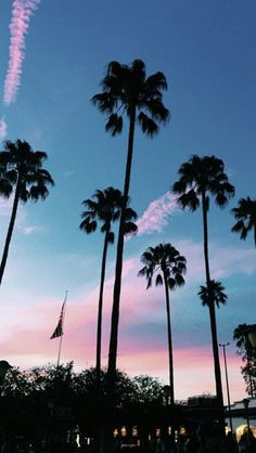 Wallpaper of Palm trees with a blue and pink cotton candy sky. Wallpapers Tumblr, Tumblr Iphone Wallpaper, Tumblr Backgrounds, Pretty Wallpapers, Wallpaper Backgrounds, Iphone Wallpapers, Cute Tumblr Wallpaper, Leaves Wallpaper, Wallpaper Ideas